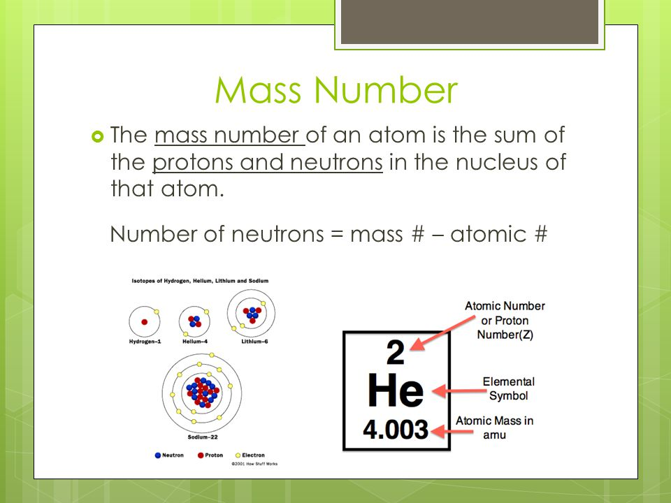 Mass Number  The mass number of an atom is the sum of the protons and neutrons in the nucleus of that atom. Number of neutrons = mass # – atomic #
