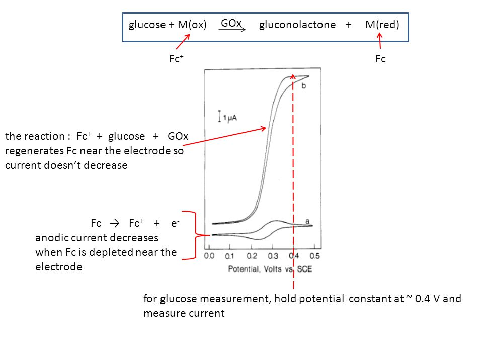 the reaction : Fc + + glucose + GOx regenerates Fc near the electrode so current doesn't decrease Fc → Fc + + e - anodic current decreases when Fc is