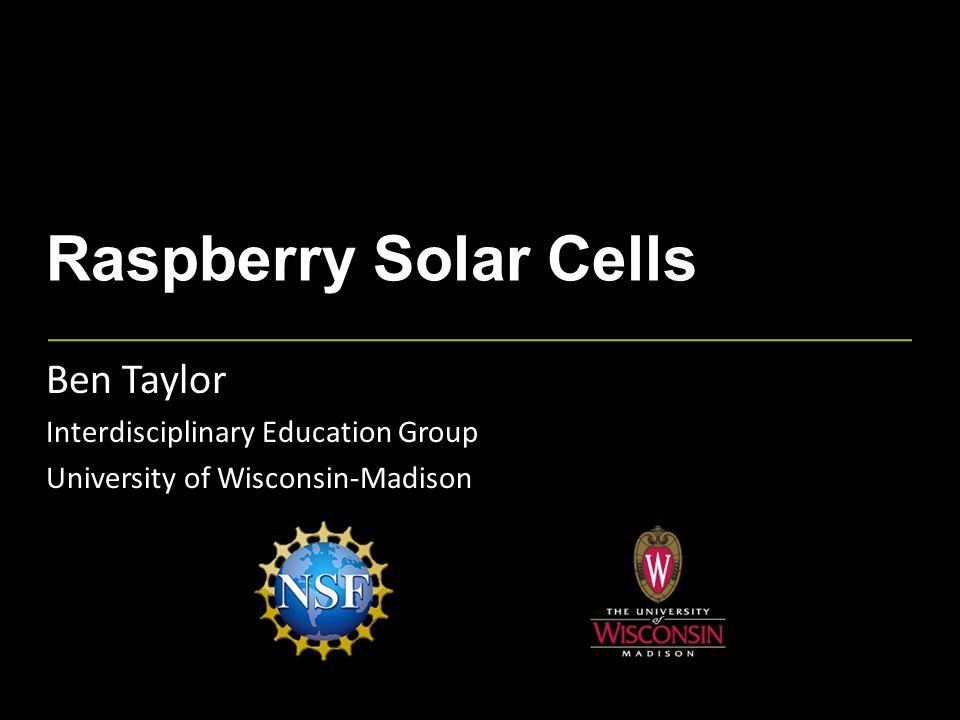 Raspberry Solar Cells Ben Taylor Interdisciplinary Education Group University of Wisconsin-Madison