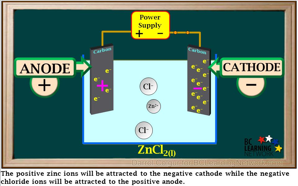 The positive zinc ions will be attracted to the negative cathode while the negative chloride ions will be attracted to the positive anode.