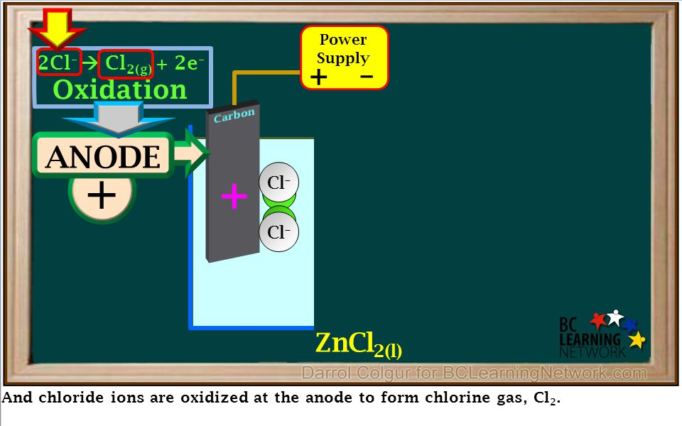 Reduction – And chloride ions are oxidized at the anode to form chlorine gas, Cl 2. + + ANODE – CATHODE – Zn Zn 2+ + 2e –  Zn (s) Oxidation 2Cl –  C