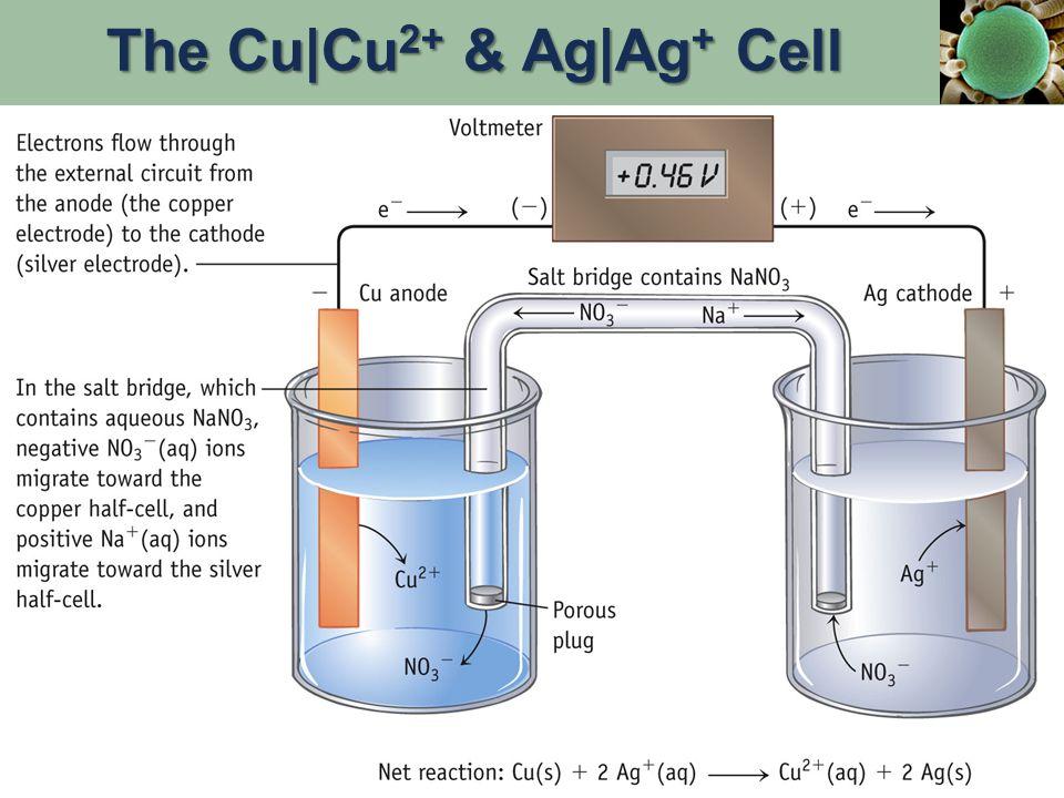 The Cu|Cu 2+ & Ag|Ag + Cell