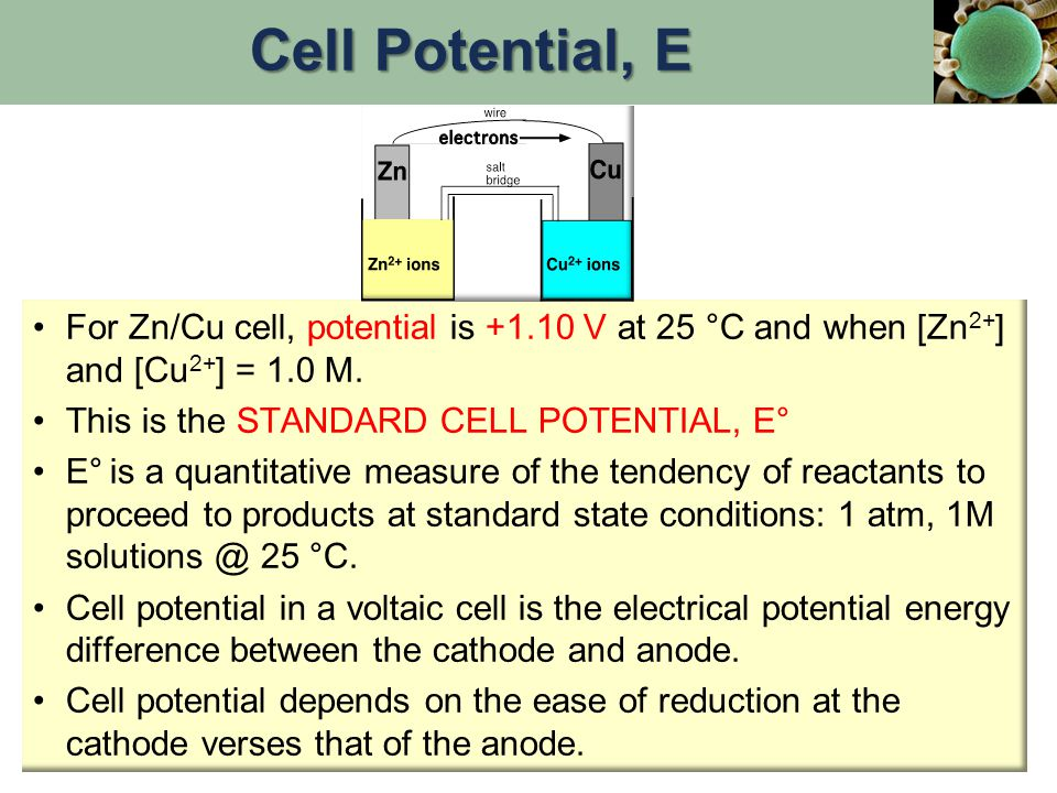 For Zn/Cu cell, potential is +1.10 V at 25 °C and when [Zn 2+ ] and [Cu 2+ ] = 1.0 M. This is the STANDARD CELL POTENTIAL, E° E° is a quantitative mea