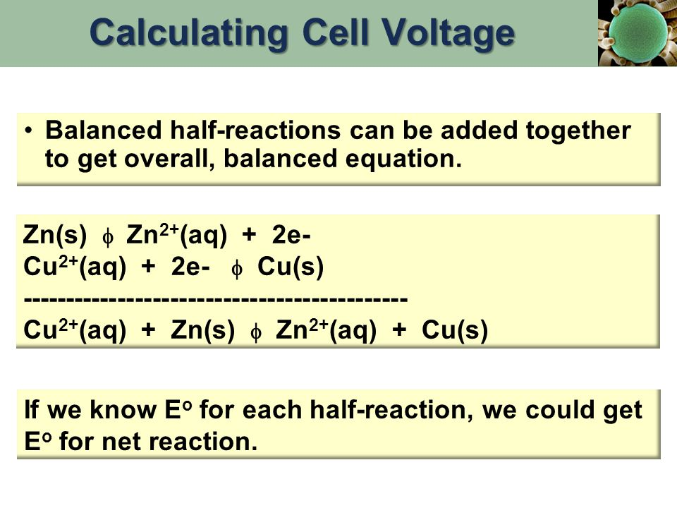 Balanced half-reactions can be added together to get overall, balanced equation.