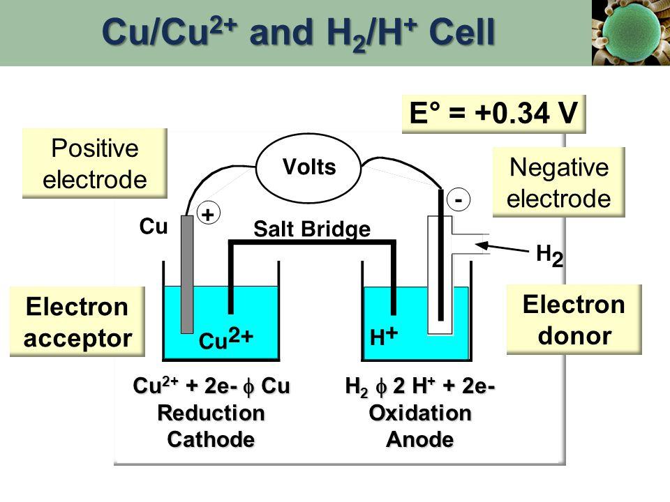 E° = +0.34 V Electron acceptor Electron donor Cu 2+ + 2e-  Cu ReductionCathode H 2  2 H + + 2e- OxidationAnode Positive electrode Negative electrode