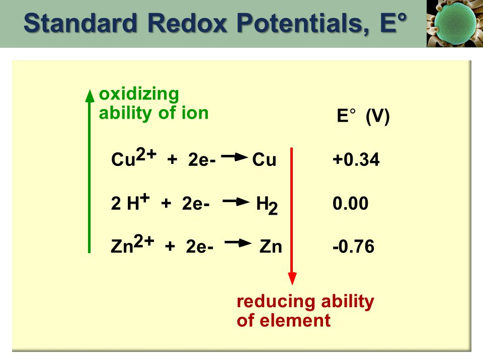 2 E°E° (V) Cu 2+ + 2e- Cu+0.34 2 H + + 2e- H0.00 Zn 2+ + 2e- Zn-0.76 oxidizing ability of ion reducing ability of element Standard Redox Potentials, E