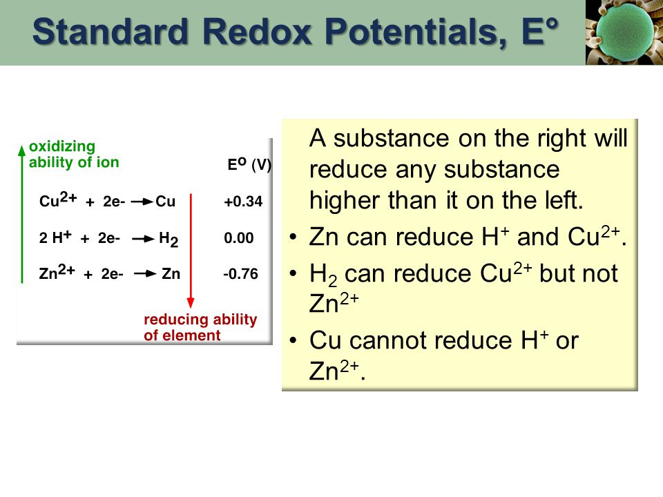 A substance on the right will reduce any substance higher than it on the left. Zn can reduce H + and Cu 2+. H 2 can reduce Cu 2+ but not Zn 2+ Cu cann