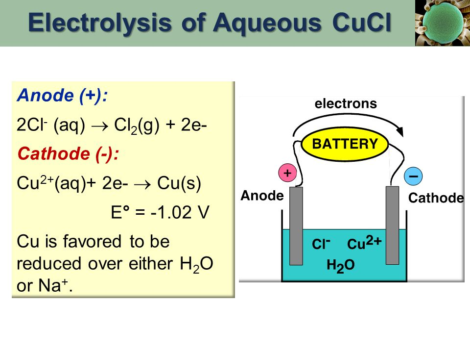 Anode (+): 2Cl - (aq)  Cl 2 (g) + 2e- Cathode (-): Cu 2+ (aq)+ 2e-  Cu(s) E° = -1.02 V Cu is favored to be reduced over either H 2 O or Na +. Electr