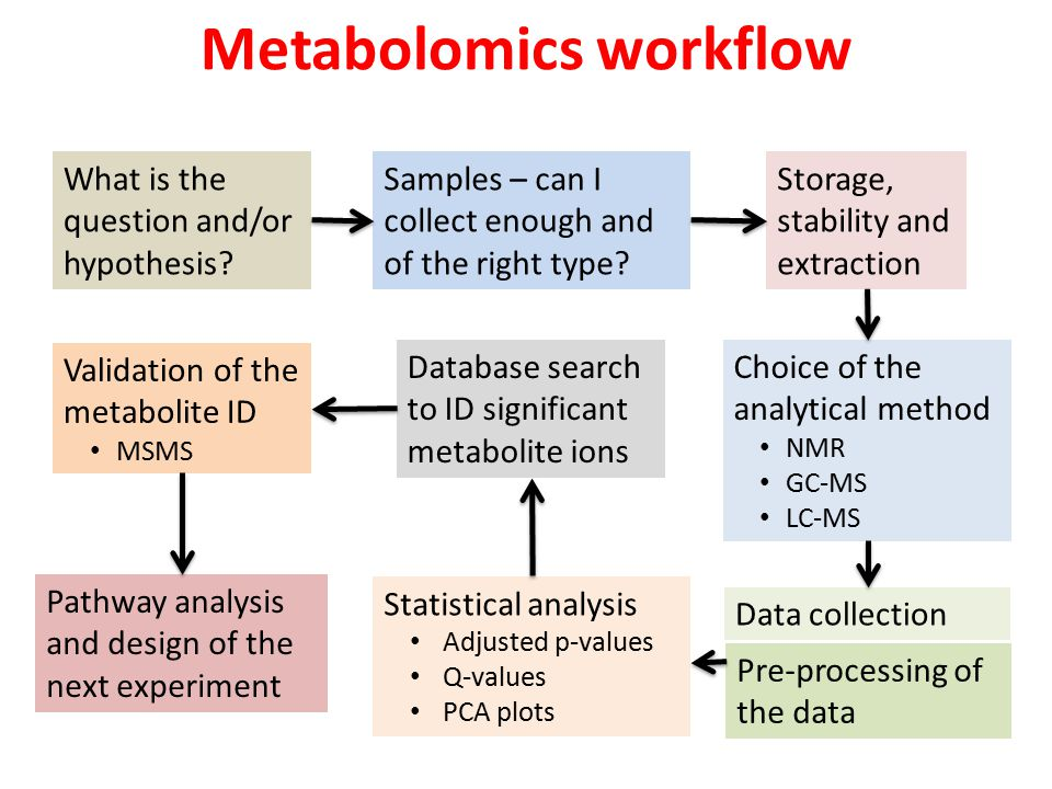 Metabolomics workflow What is the question and/or hypothesis.