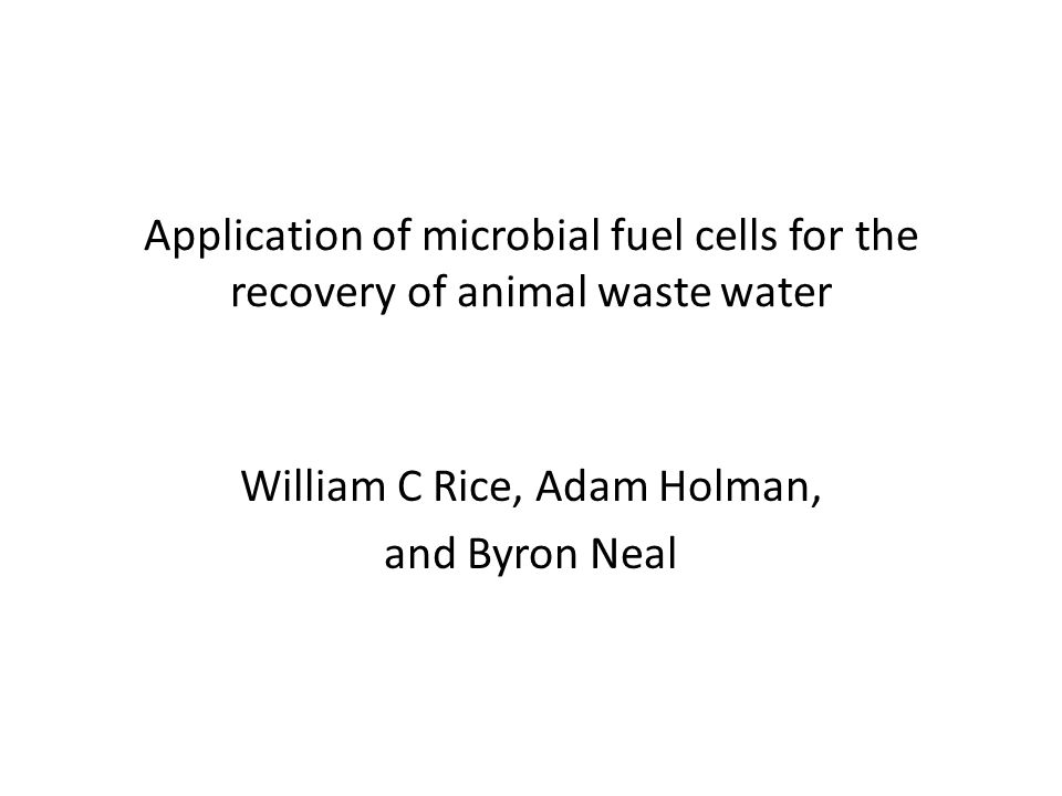 Application of microbial fuel cells for the recovery of animal waste water William C Rice, Adam Holman, and Byron Neal