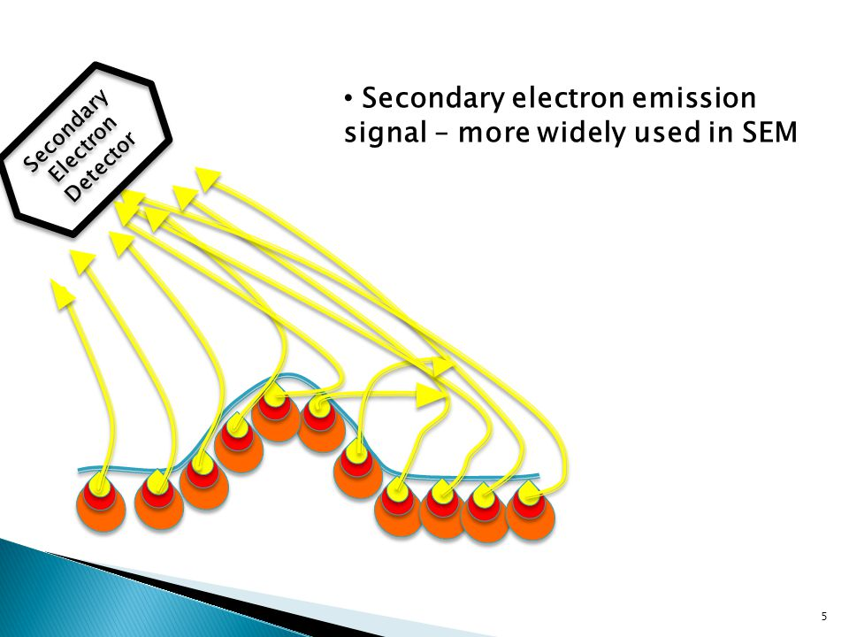 5 Secondary Electron Detector Secondary electron emission signal – more widely used in SEM