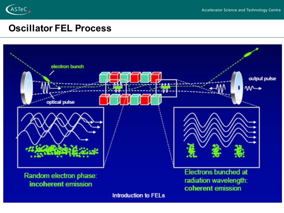 Oscillator FEL Process