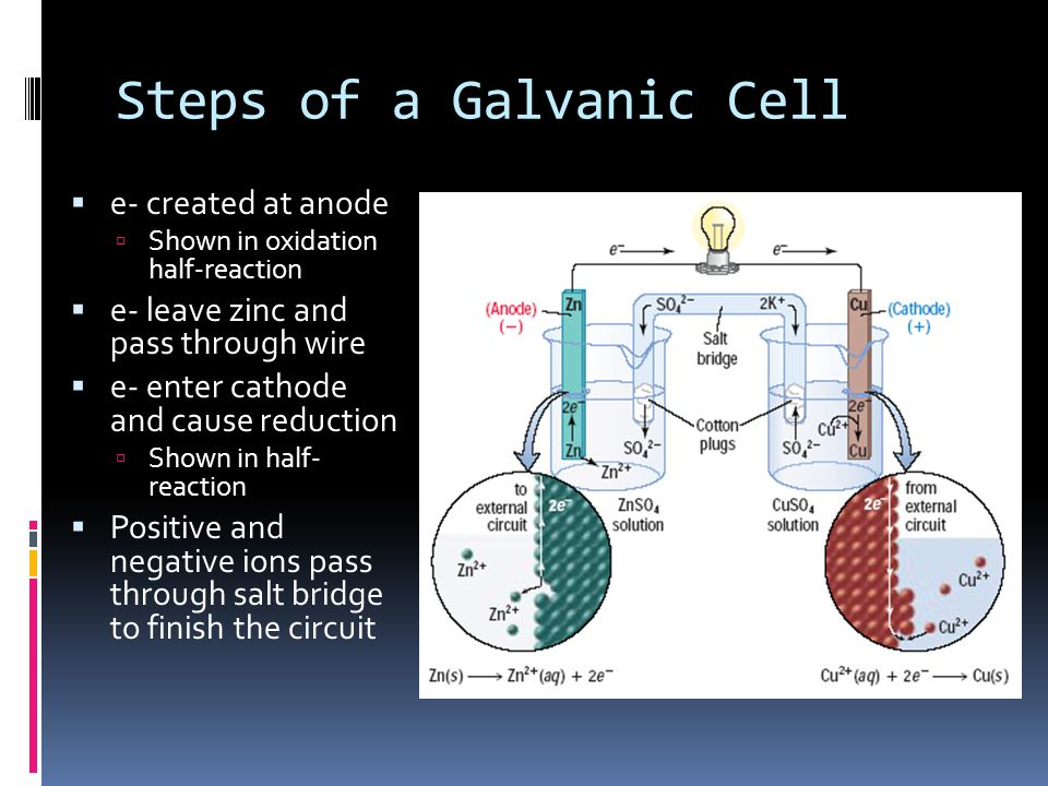 Steps of a Galvanic Cell  e- created at anode  Shown in oxidation half-reaction  e- leave zinc and pass through wire  e- enter cathode and cause r