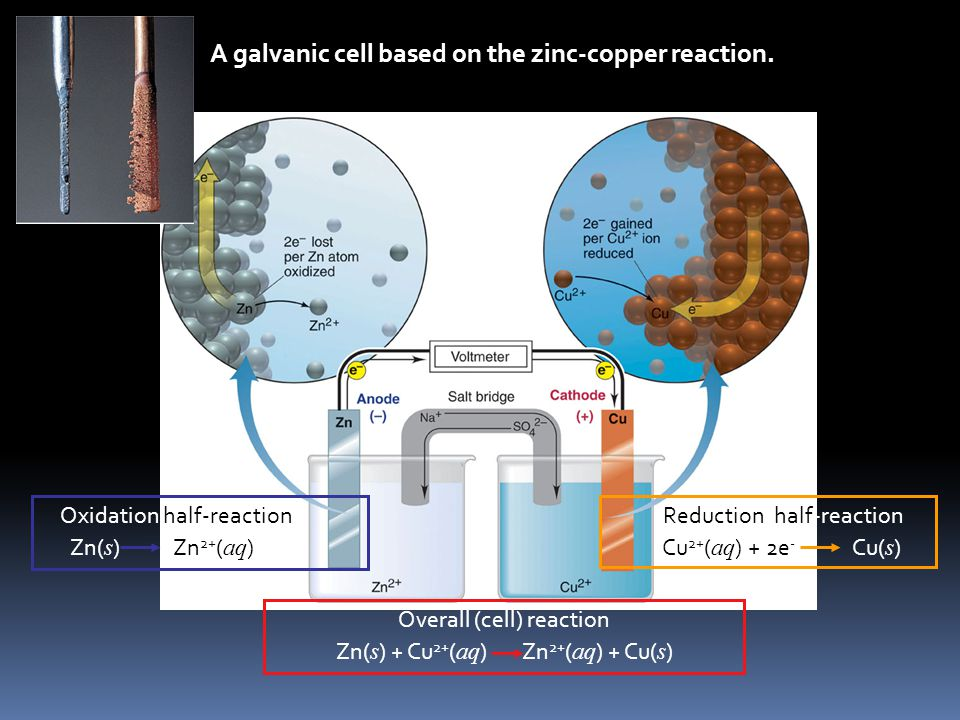 Figure 21.5 A galvanic cell based on the zinc-copper reaction. Oxidation half-reaction Zn( s ) Zn 2+ ( aq ) + 2e - Reduction half-reaction Cu 2+ ( aq