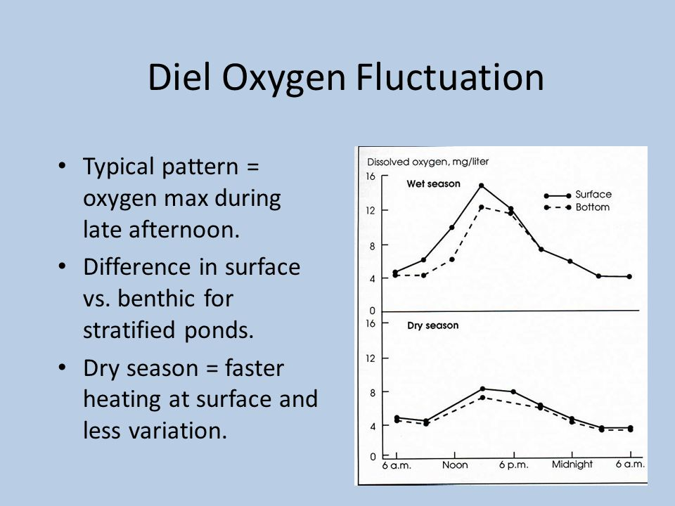 Diel Oxygen Fluctuation Typical pattern = oxygen max during late afternoon.