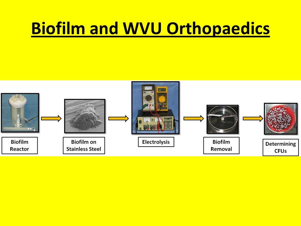 Biofilm and WVU Orthopaedics