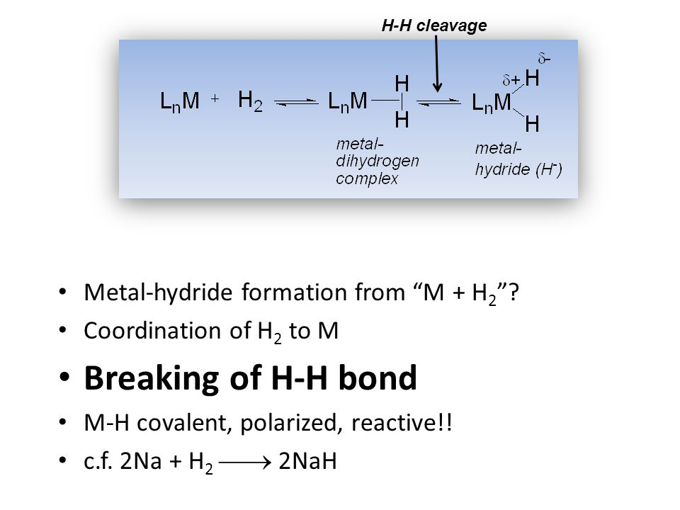 Metal-hydride formation from M + H 2 .