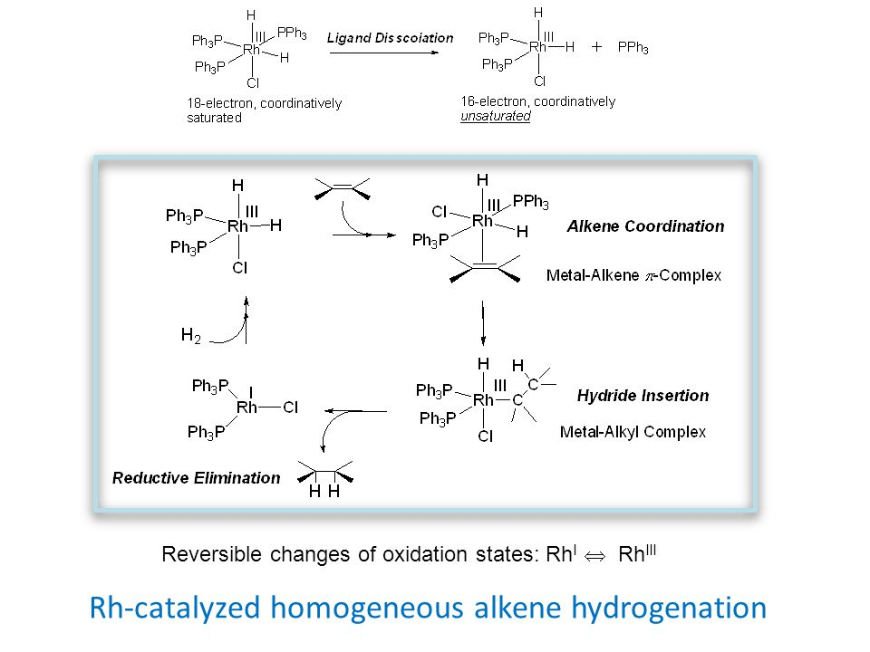Rh-catalyzed homogeneous alkene hydrogenation Reversible changes of oxidation states: Rh I  Rh III