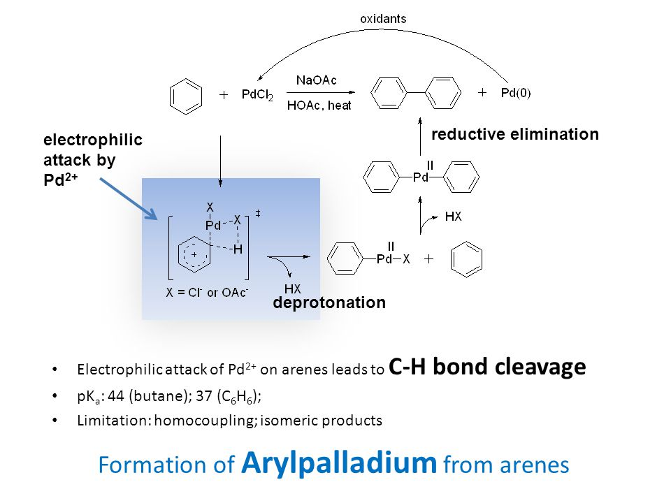 Formation of Arylpalladium from arenes Electrophilic attack of Pd 2+ on arenes leads to C-H bond cleavage pK a : 44 (butane); 37 (C 6 H 6 ); Limitation: homocoupling; isomeric products electrophilic attack by Pd 2+ deprotonation reductive elimination