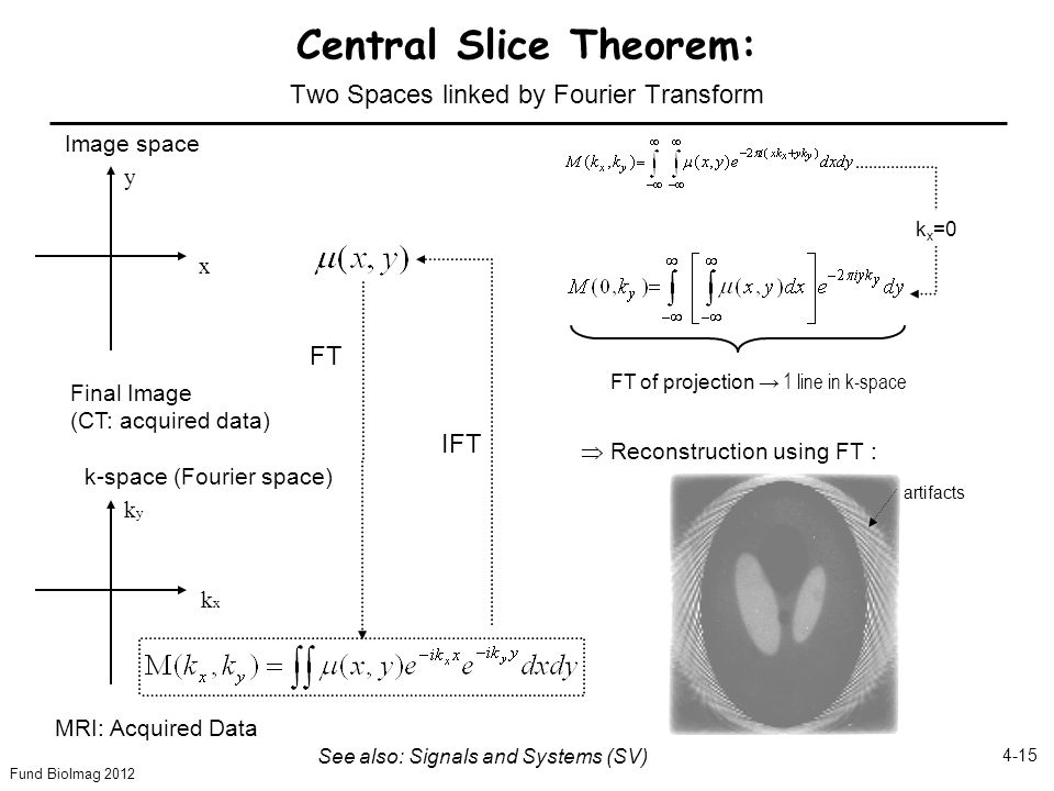 Fund BioImag 2012 4-15 Central Slice Theorem: Two Spaces linked by Fourier Transform FT IFT k-space (Fourier space) kxkx kyky MRI: Acquired Data Image space x y Final Image (CT: acquired data) See also: Signals and Systems (SV) FT of projection → 1 line in k-space  Reconstruction using FT : artifacts k x =0