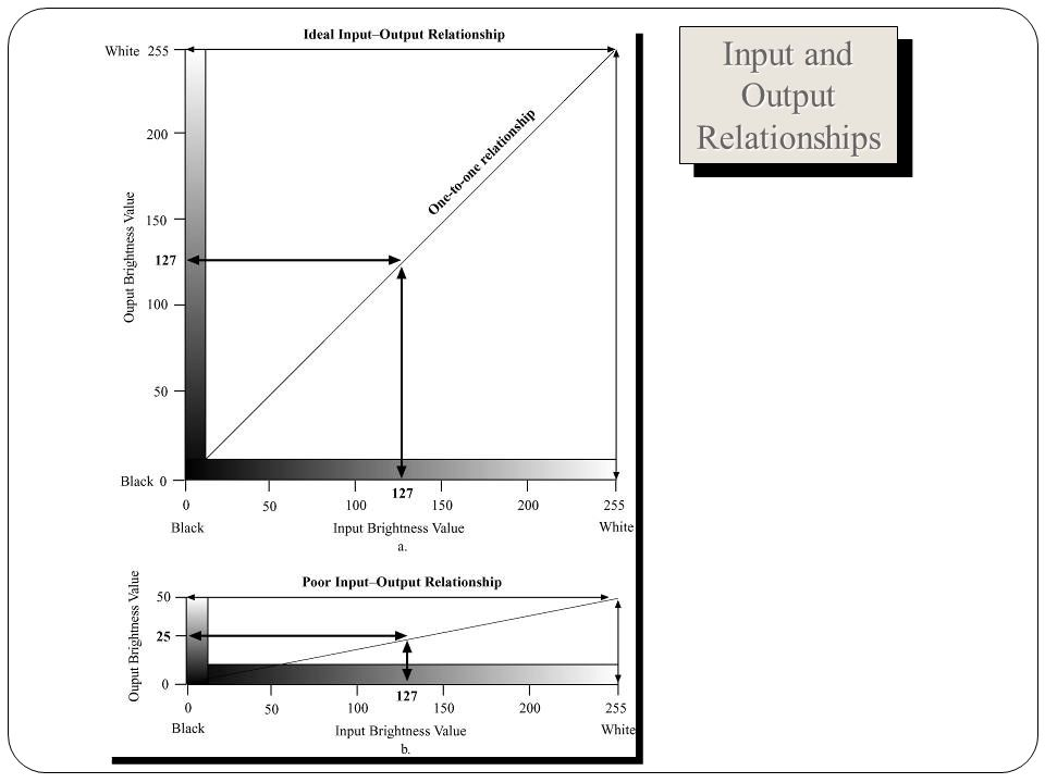 Input and Output Relationships