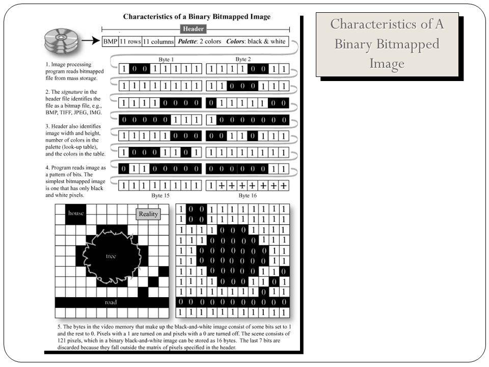 Characteristics of A Binary Bitmapped Image