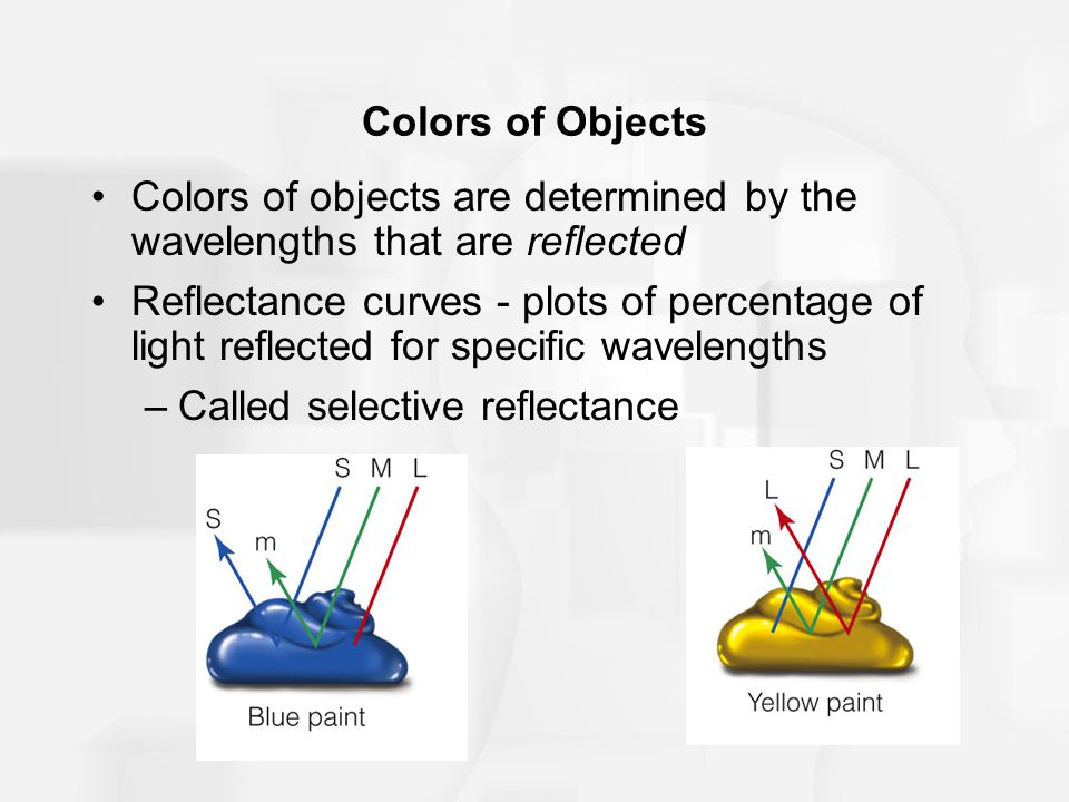 Colors of Objects Colors of objects are determined by the wavelengths that are reflected Reflectance curves - plots of percentage of light reflected for specific wavelengths –Called selective reflectance