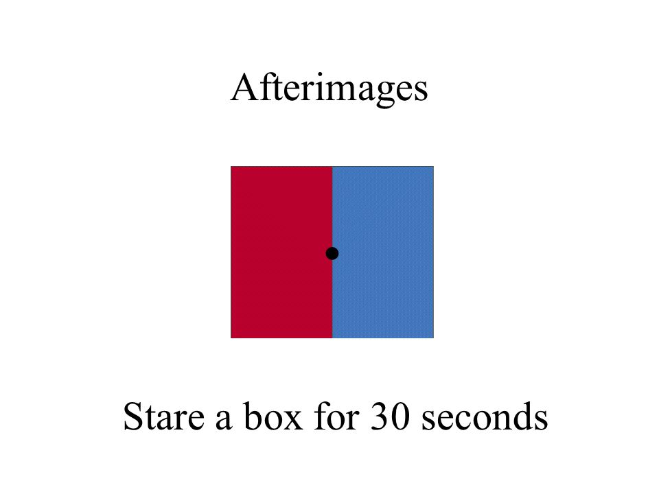 Afterimages Stare a box for 30 seconds