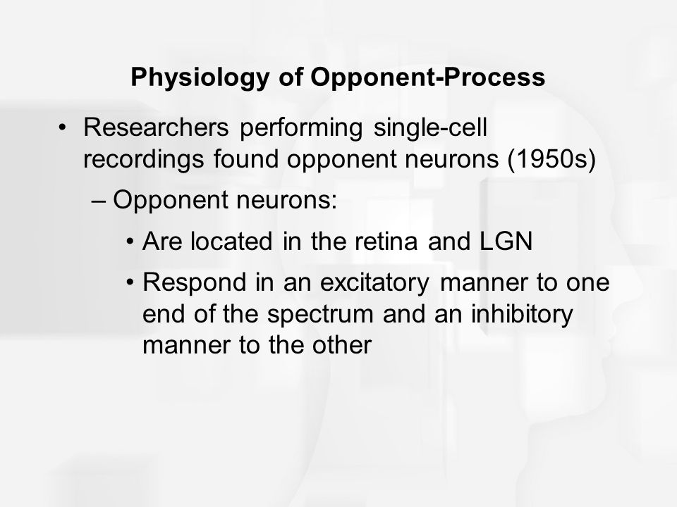 Physiology of Opponent-Process Researchers performing single-cell recordings found opponent neurons (1950s) –Opponent neurons: Are located in the retina and LGN Respond in an excitatory manner to one end of the spectrum and an inhibitory manner to the other
