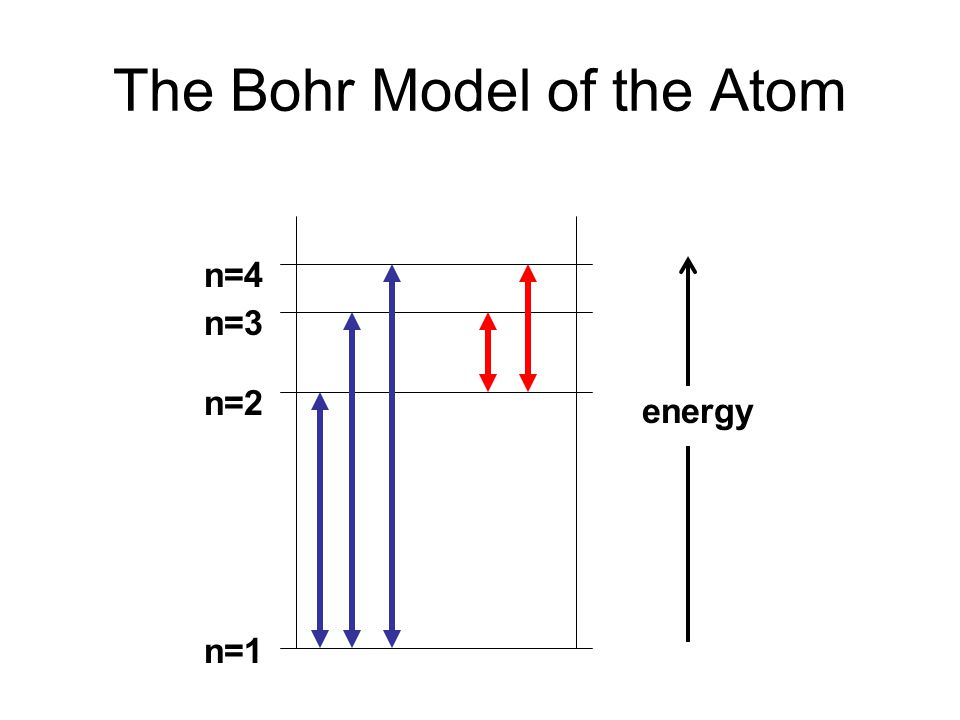 The Bohr Model of the Atom n=1 n=2 n=3 n=4 energy