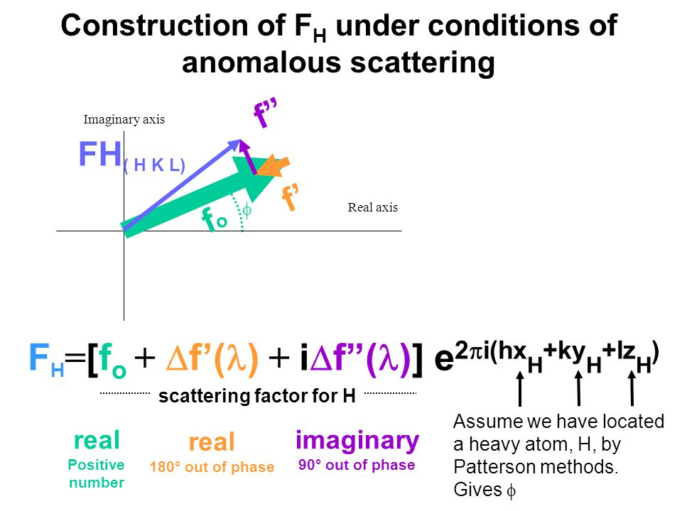  Real axis Imaginary axis Construction of F H under conditions of anomalous scattering F H = [f o +  f'( ) + i  f ( )] e 2  i(hx H +ky H +lz H ) Assume we have located a heavy atom, H, by Patterson methods.