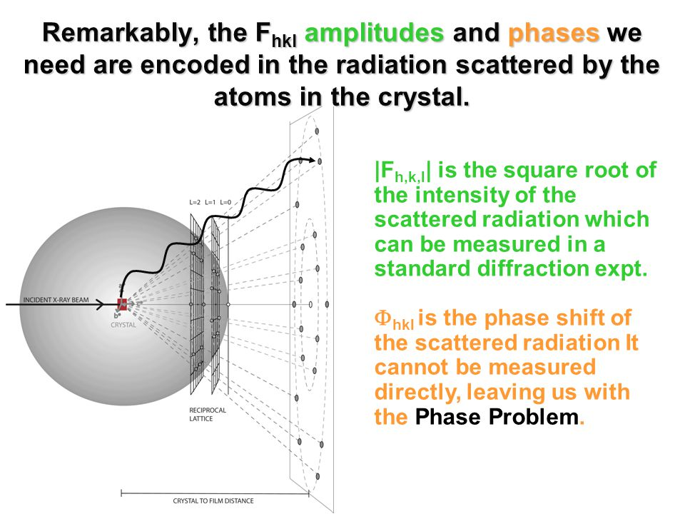 Remarkably, the F hkl amplitudes and phases we need are encoded in the radiation scattered by the atoms in the crystal.