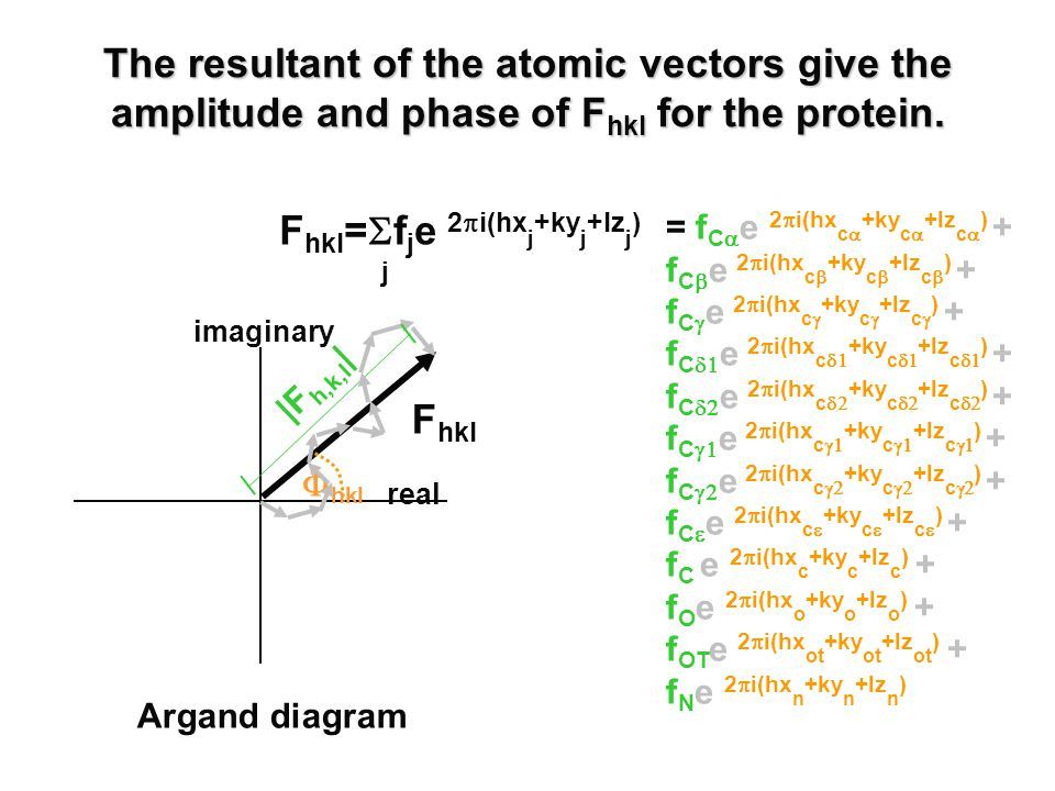 The resultant of the atomic vectors give the amplitude and phase of F hkl for the protein.