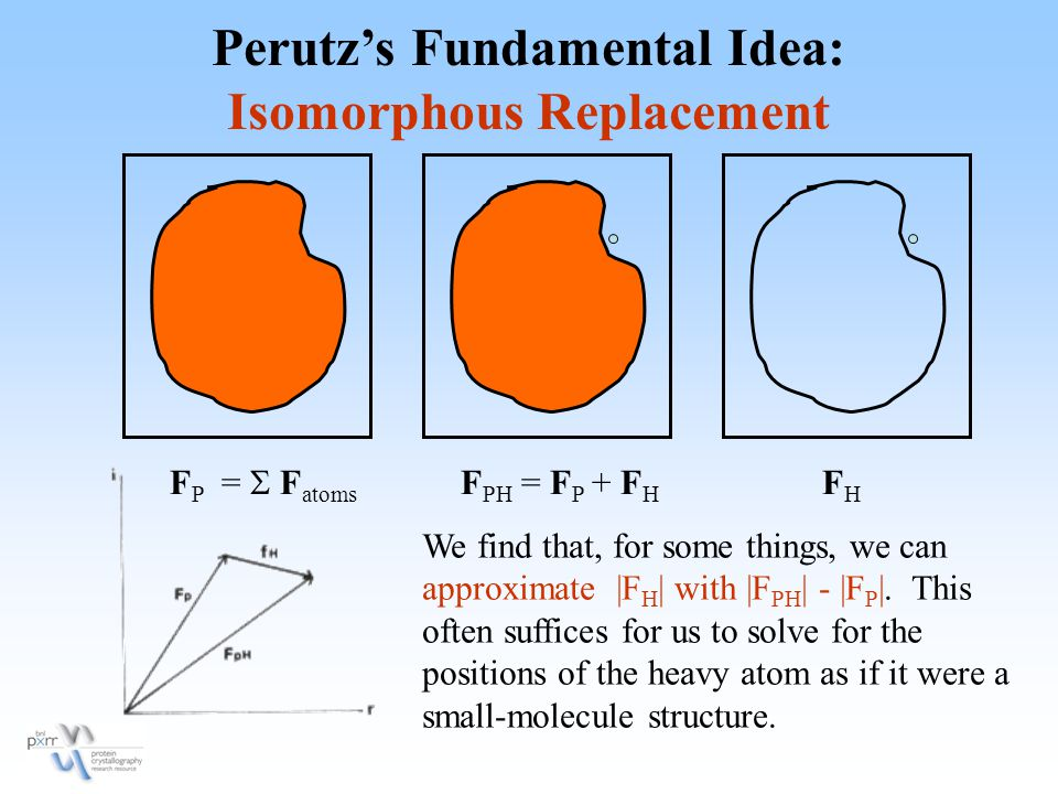 Perutz's Fundamental Idea: Isomorphous Replacement F P =  F atoms F PH = F P + F H FHFH We find that, for some things, we can approximate |F H | with