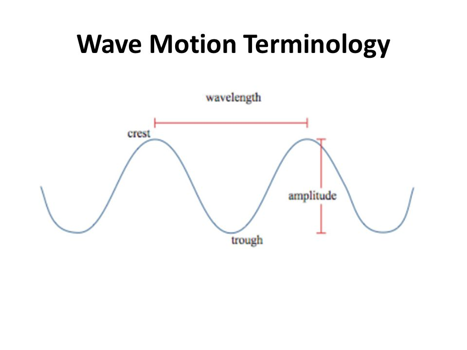 Wave Motion Terminology