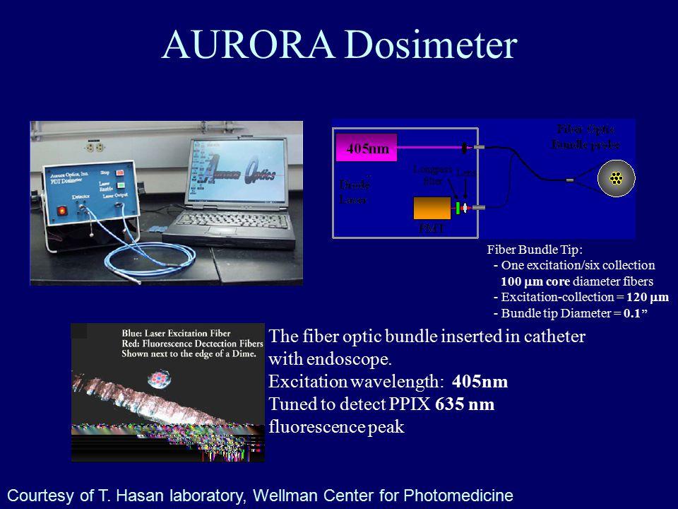 AURORA Dosimeter The fiber optic bundle inserted in catheter with endoscope.