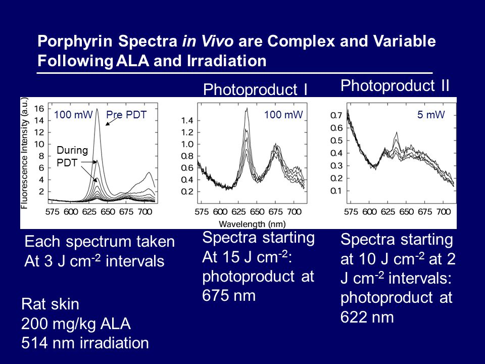 Porphyrin Spectra in Vivo are Complex and Variable Following ALA and Irradiation Pre PDT100 mW5 mW Rat skin 200 mg/kg ALA 514 nm irradiation Photoproduct I Photoproduct II During PDT 100 mW Each spectrum taken At 3 J cm -2 intervals Spectra starting At 15 J cm -2 : photoproduct at 675 nm Spectra starting at 10 J cm -2 at 2 J cm -2 intervals: photoproduct at 622 nm