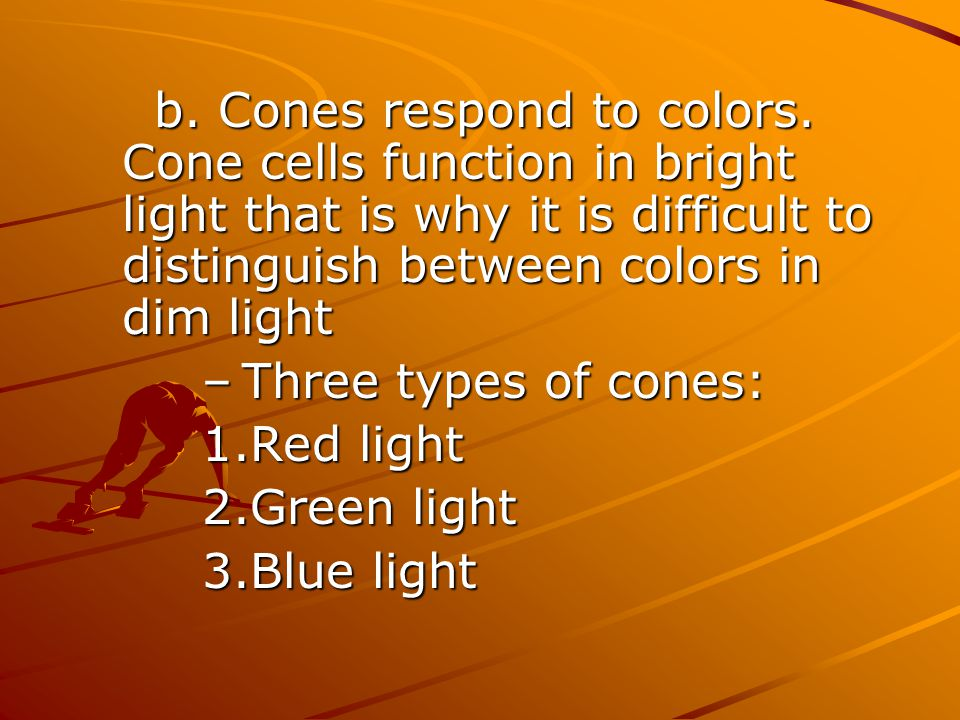 b. Cones respond to colors. Cone cells function in bright light that is why it is difficult to distinguish between colors in dim light –Three types of