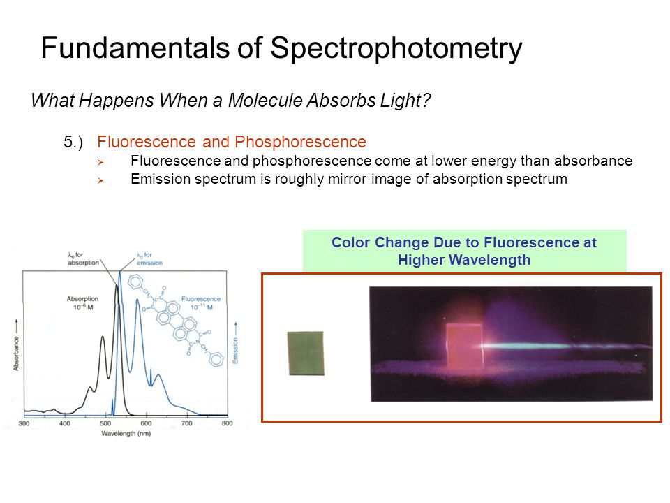 Fundamentals of Spectrophotometry What Happens When a Molecule Absorbs Light.