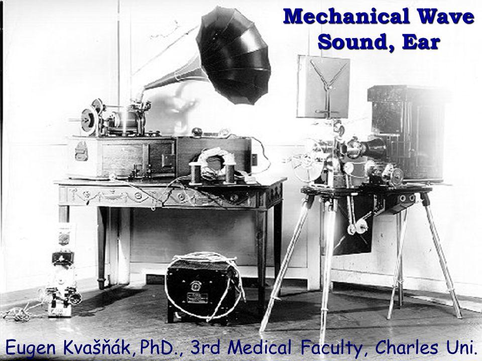 Mechanical Wave Sound, Ear Eugen Kvašňák, PhD., 3rd Medical Faculty, Charles Uni.