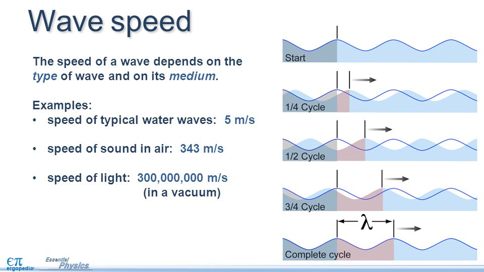 The speed of a wave depends on the type of wave and on its medium. Examples: speed of typical water waves: 5 m/s speed of sound in air: 343 m/s speed
