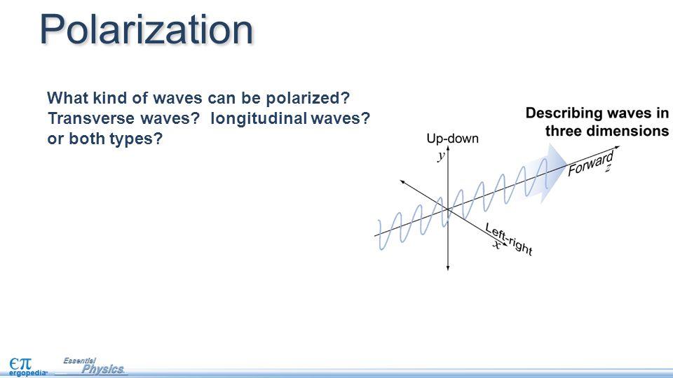 What kind of waves can be polarized? Transverse waves? longitudinal waves? or both types? Polarization