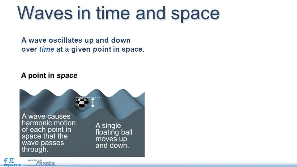Waves in time and space A wave oscillates up and down over time at a given point in space.