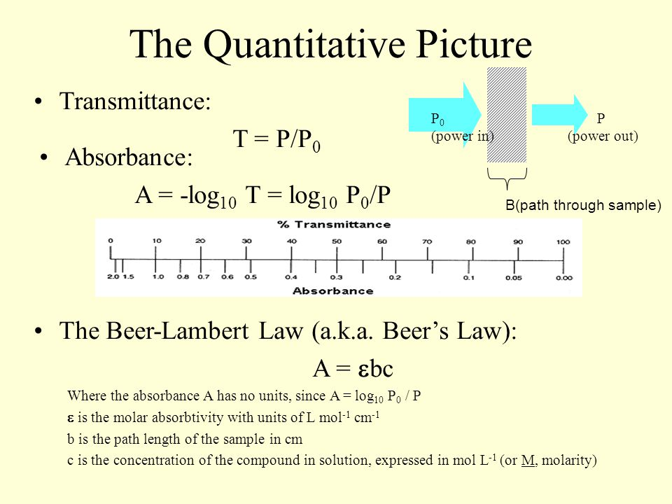 The Quantitative Picture Transmittance: T = P/P 0 B(path through sample) P 0 (power in) P (power out) Absorbance: A = -log 10 T = log 10 P 0 /P The Beer-Lambert Law (a.k.a.