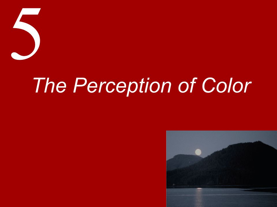 5 The Perception of Color
