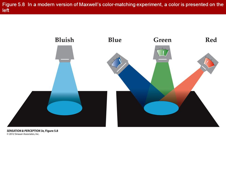 Figure 5.8 In a modern version of Maxwell's color-matching experiment, a color is presented on the left