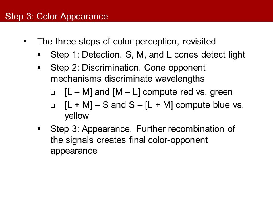 Step 3: Color Appearance The three steps of color perception, revisited  Step 1: Detection. S, M, and L cones detect light  Step 2: Discrimination.