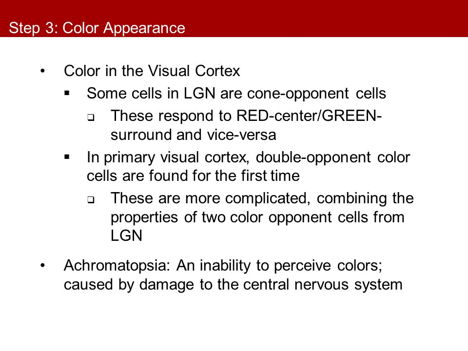 Step 3: Color Appearance Color in the Visual Cortex  Some cells in LGN are cone-opponent cells  These respond to RED-center/GREEN- surround and vice