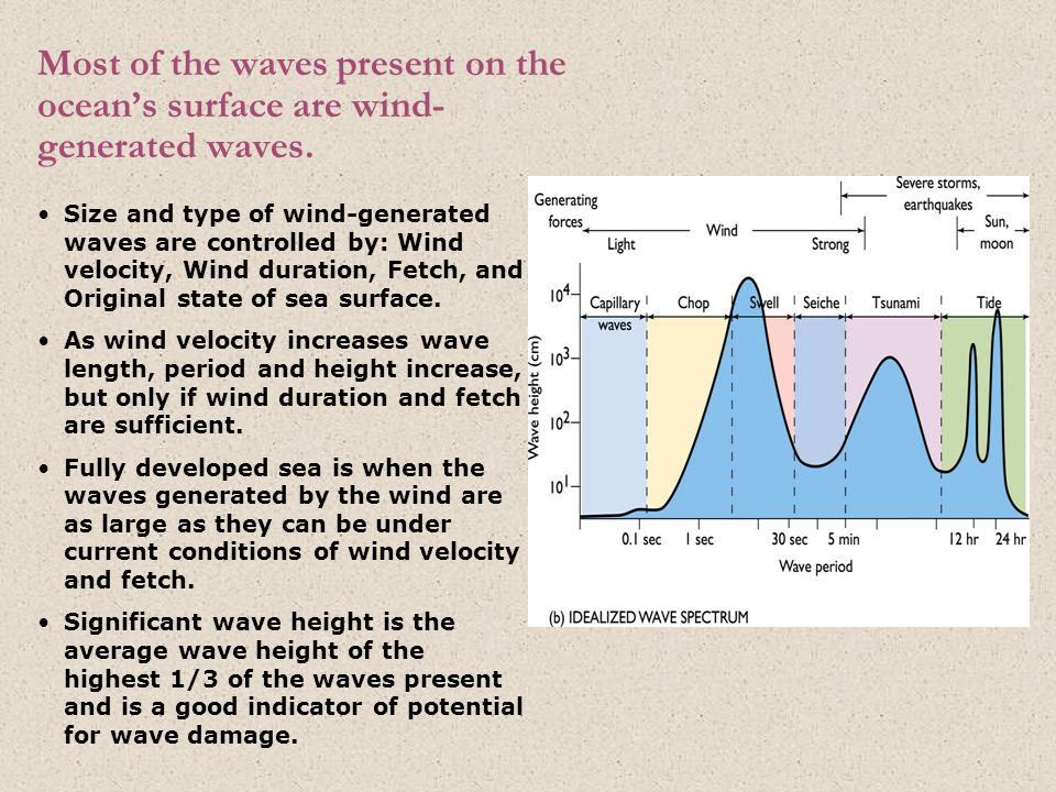 Most of the waves present on the ocean's surface are wind- generated waves.