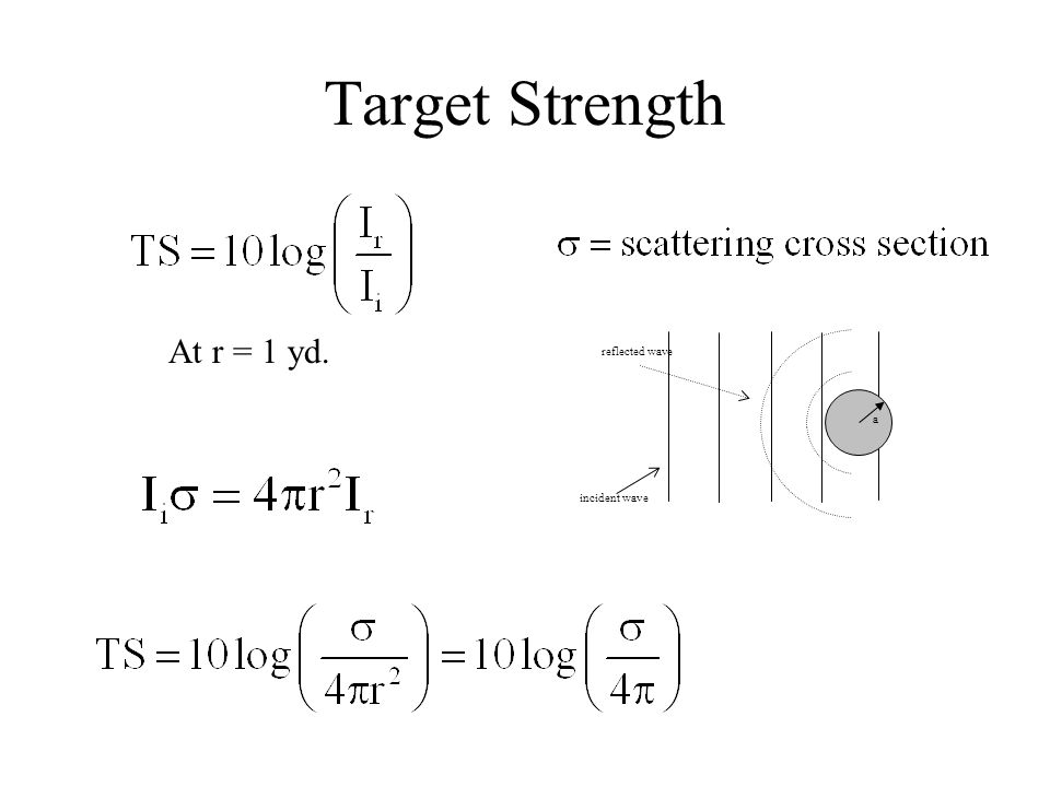 Factors Determining Target Strength the shape of the target the size of the target the construction of the walls of the target the wavelength of the incident sound the angle of incidence of the sound